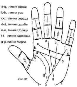 Как правильно прочитать линии на своей руке