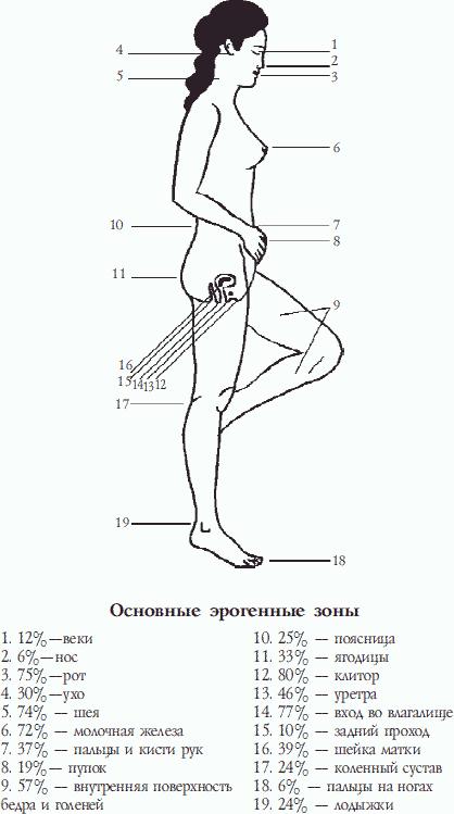 chuvstvitelnie-zoni-vlagalisha-u-zhenshin